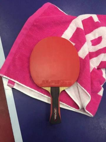 乒乓国家队选手使用红双喜器材盘点,反手狂飚使用率增加!